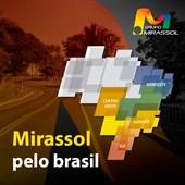 Grupo Mirassol pelo Brasil.