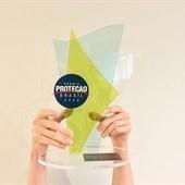 Prêmio Proteção Brasil 2020