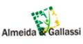 ALMEIDA E GALLASSI RECURSOS HUMANOS E ASSOCIADOS LTDA logo
