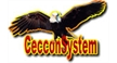 CECCONSYSTEM PRODUCOES E EVENTOS LTDA - ME