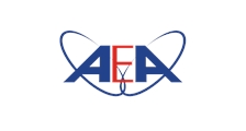 American English Academy logo
