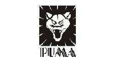 PUMA COMERCIAL DE METAIS logo