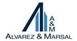 Alvarez & Marsal Brasil