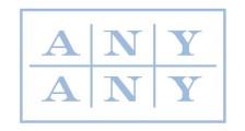 Any Any logo